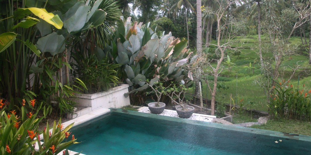 Trusted House Sitters Bali