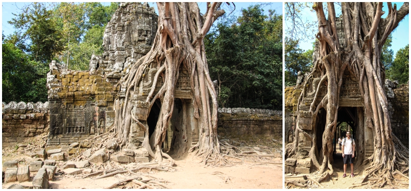 Ta Som Temple with trees