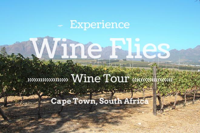 Wine Flies Tour South Africa