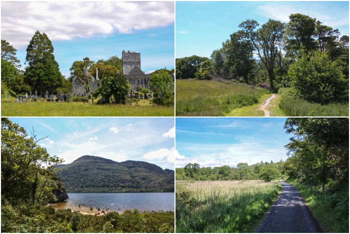 Killarney National Park near Ring of Kerry