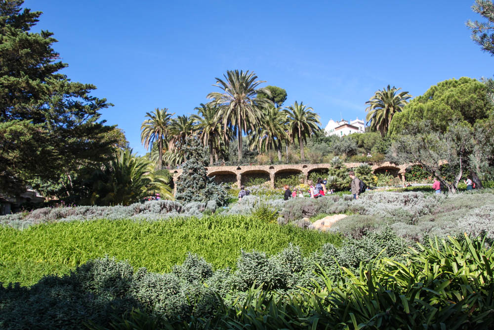 Plenty of nature at Park Güell