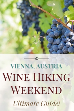 Vienna Wine Hiking Day Weekend