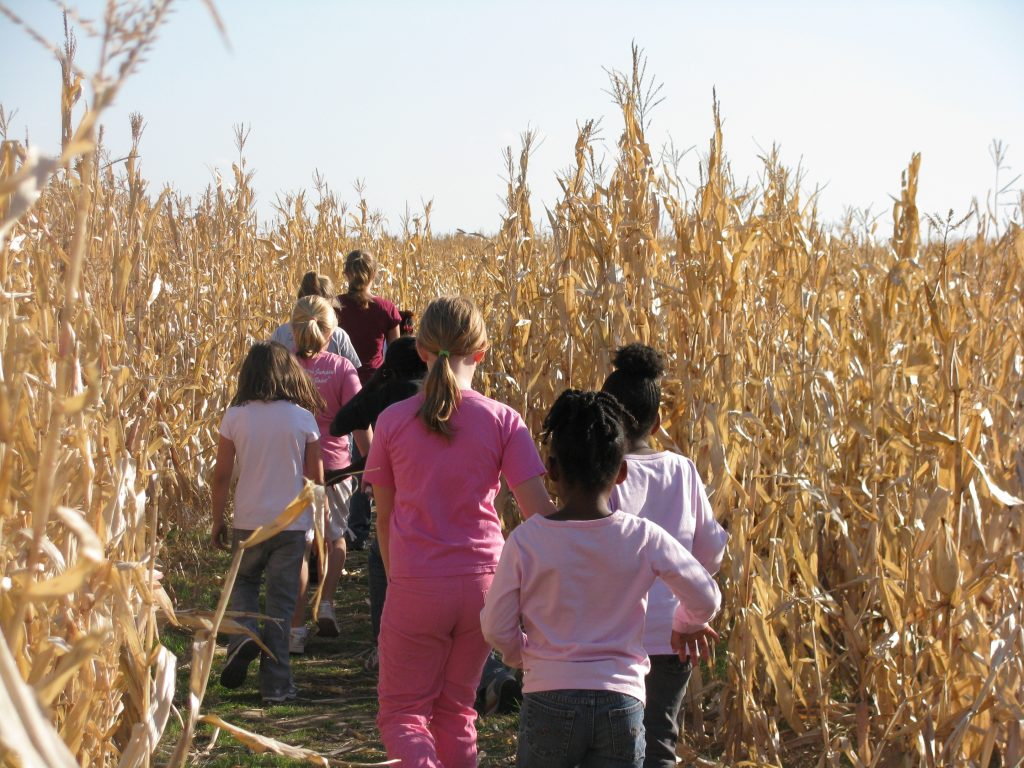 Family fall day trips in Wisconsin